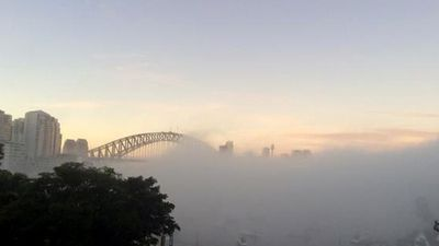 The fog cloud blankets the harbour. (Twitter - @foxylabuck)