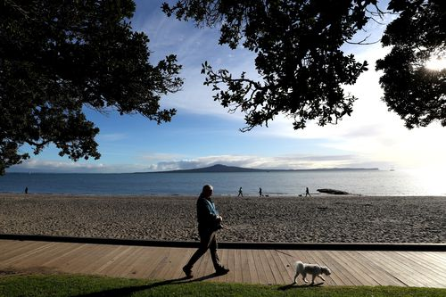 A man walks his dog under level 3 restrictions along Kohimarama Beach in Auckland, New Zealand. COVID-19 restrictions are in place across the country.