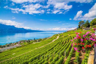 9. Vevey, Switzerland