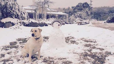 Heavy snow falls in Queensland and NSW (Gallery)