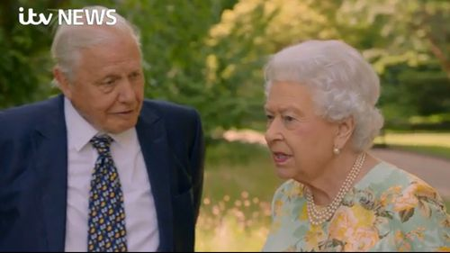 Sir David Attenborough interviewed the Queen about her Queen's Commonwealth Canopy project. (ITV/Supplied)