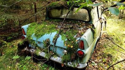 After 40 years the Ford has sunk about six inches into the ground and Mr Nummelin suspects the floor has been rotted through.