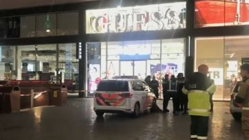 Dutch stabbing suspect arrested in Hague attack on Black Friday