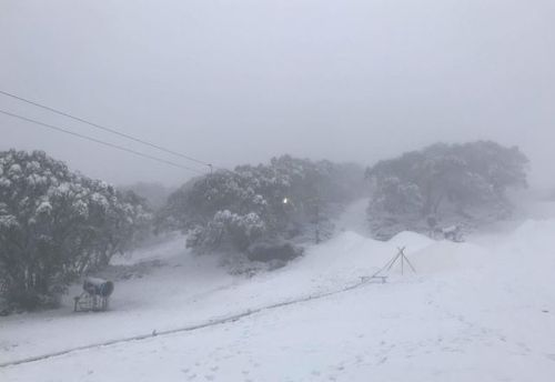 The brutally cold conditions led the overnight snow. (9NEWS)