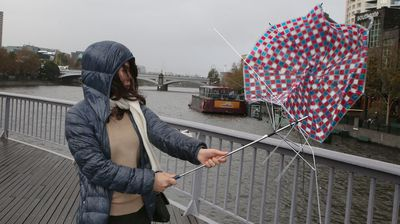 A Melbourne woman's umbrella crumples under the wind force. (AAP)