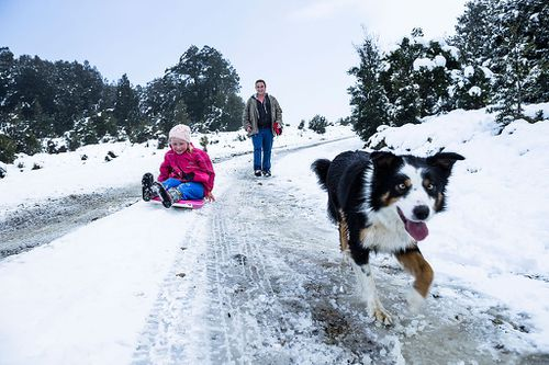 The low temperatures have created ideal conditions for snowfall, with many parts in the Australian alps receiving more snow than recent years. Picture: Getty.