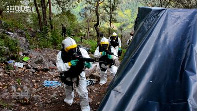60 Minutes reporter Tom Steinfort joined Mexican federal police to raid a marijuana plantation.
