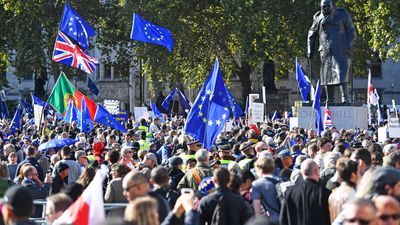 Brexit protests 10