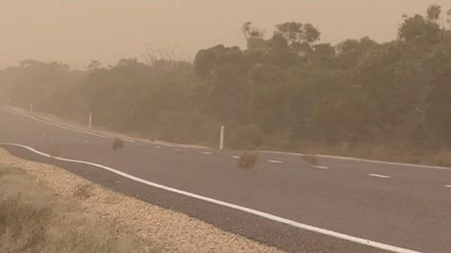 Winds reached 102km/h hours in South Australia today. Picture: 9NEWS
