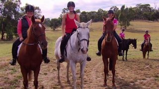 Adelaide Hills Highlights