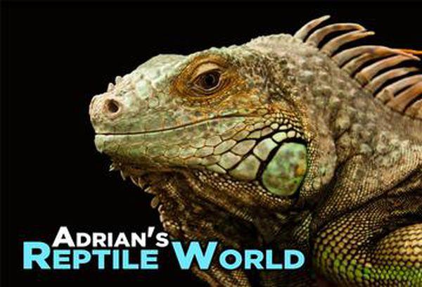 Adrian's Reptile World