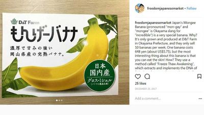 "Edible banana peel: <a href=""http://www.instagram.com/p/BdHueXsn_Um/?utm_source=ig_embed"" target=""_top"" draggable=""false"">""Mongee"" banana <strong><em></em></strong></a>"