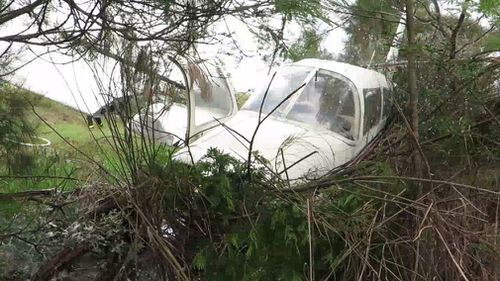 The plane came to a rest in bushland in a paddock. (9NEWS)
