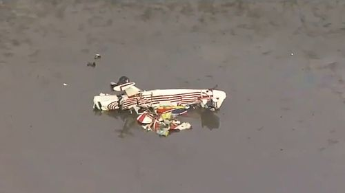 A man has died following a light plane crash north of Brisbane this morning.