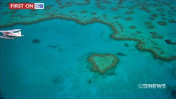 Great Barrier Reef 'struggling' amid bleak climate change outlook