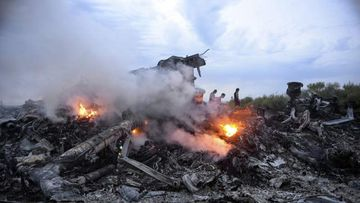 The wreckage of Malaysia Airlines flight MH17.