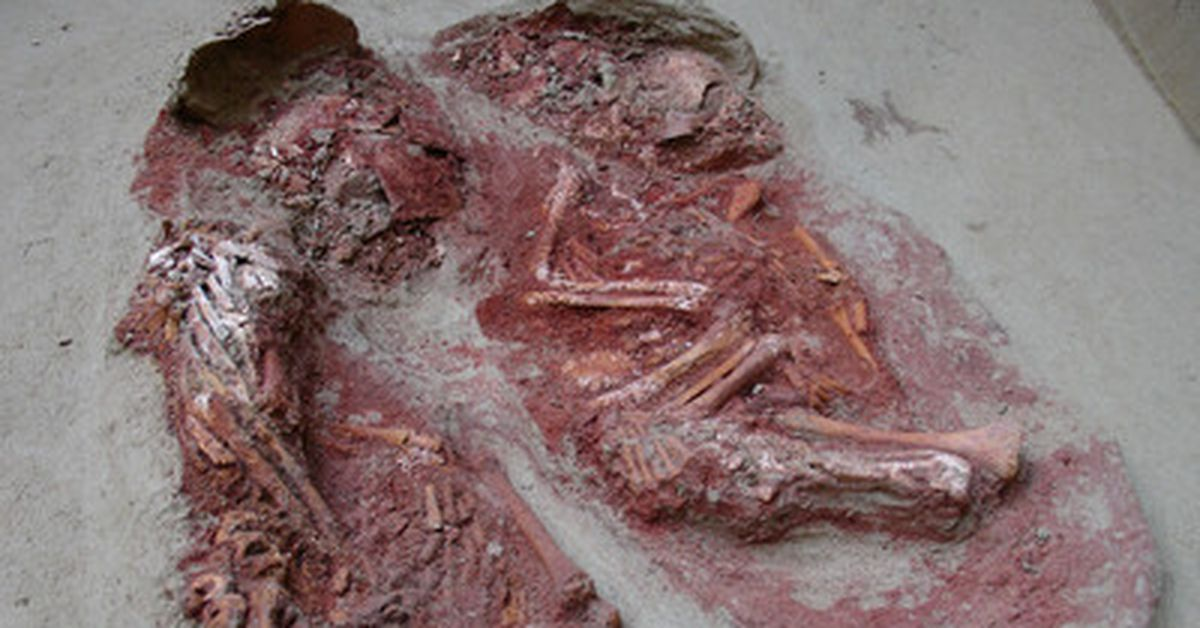 World's oldest twins found in Stone Age grave – 9News
