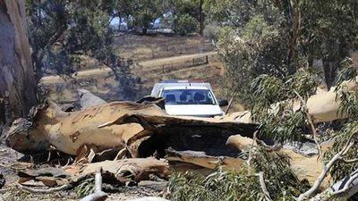 Residents are desperate to return to their homes but have been stopped by fallen trees. Many do not know if their homes have survived the blaze. (Twitter)
