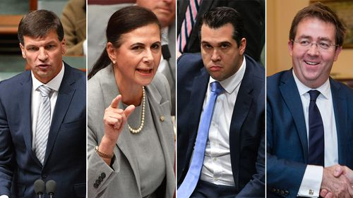 Angus Taylor, Concetta Fierravanti-Wells, Michael Sukkar, James McGrath sought to quit their roles and follow Mr Dutton to the back bench after Mr Turnbull clung on to his prime ministership.