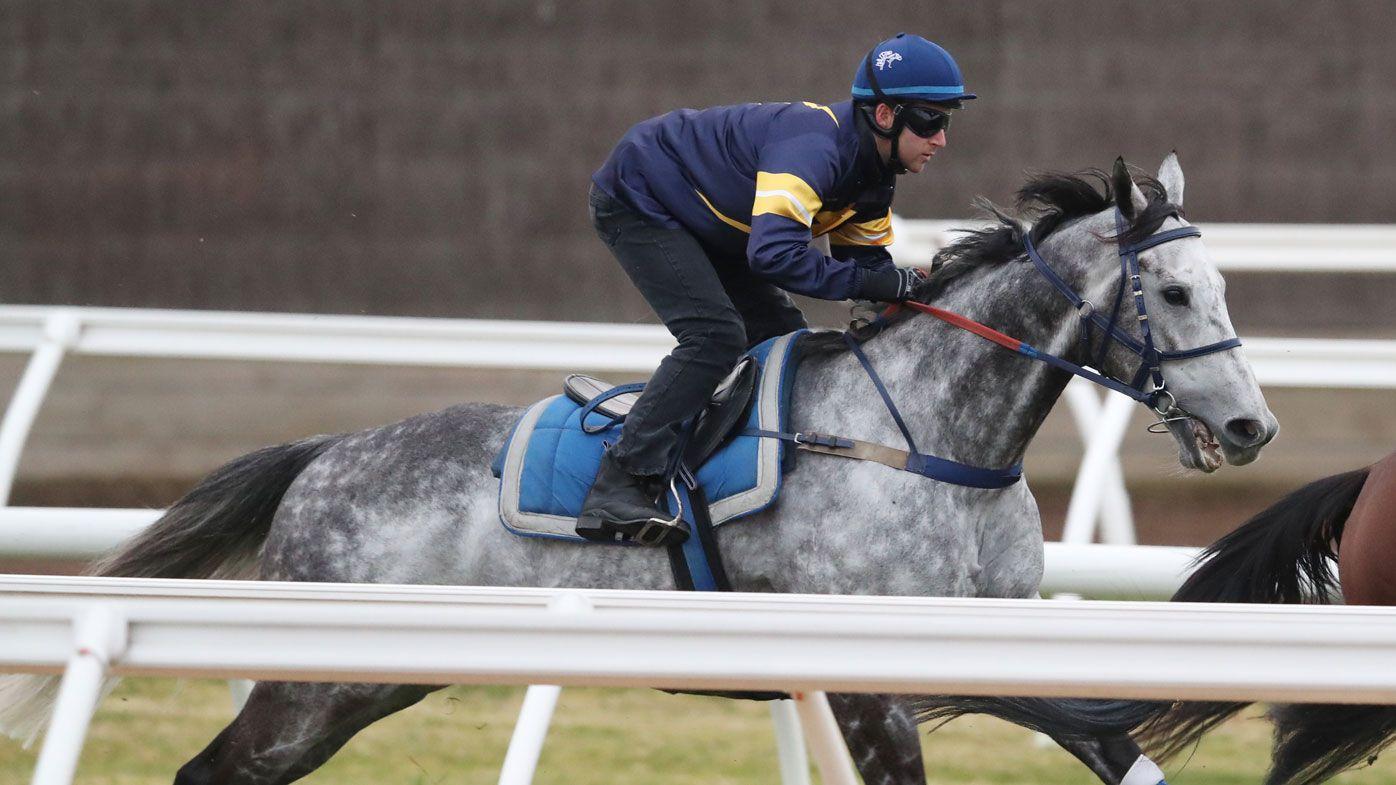 Chautauqua passes Flemington jump-out test