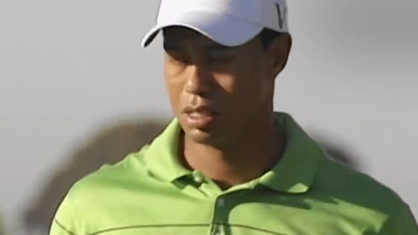 Dating woods 💌 now tiger Search for: