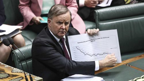 Anthony Albanese in Parliament today.