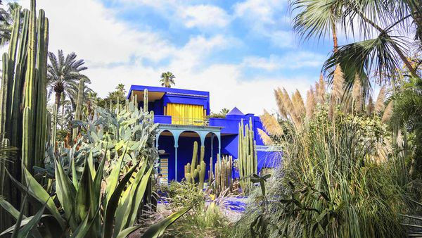 Jardin Majorelle villa and botanical garden restored by Yves Saint-Laurent and Pierre Berge.