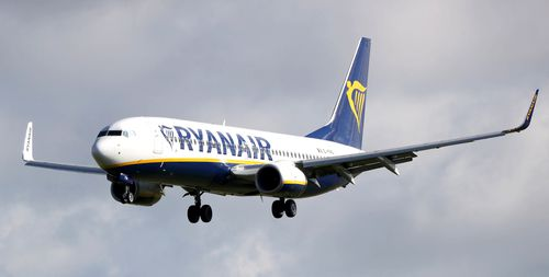 The budget airline released a statement saying the staff breached trust and damaged Ryanair's reputation.