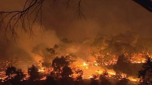 A blaze burns out of control in South Australia. (9NEWS)
