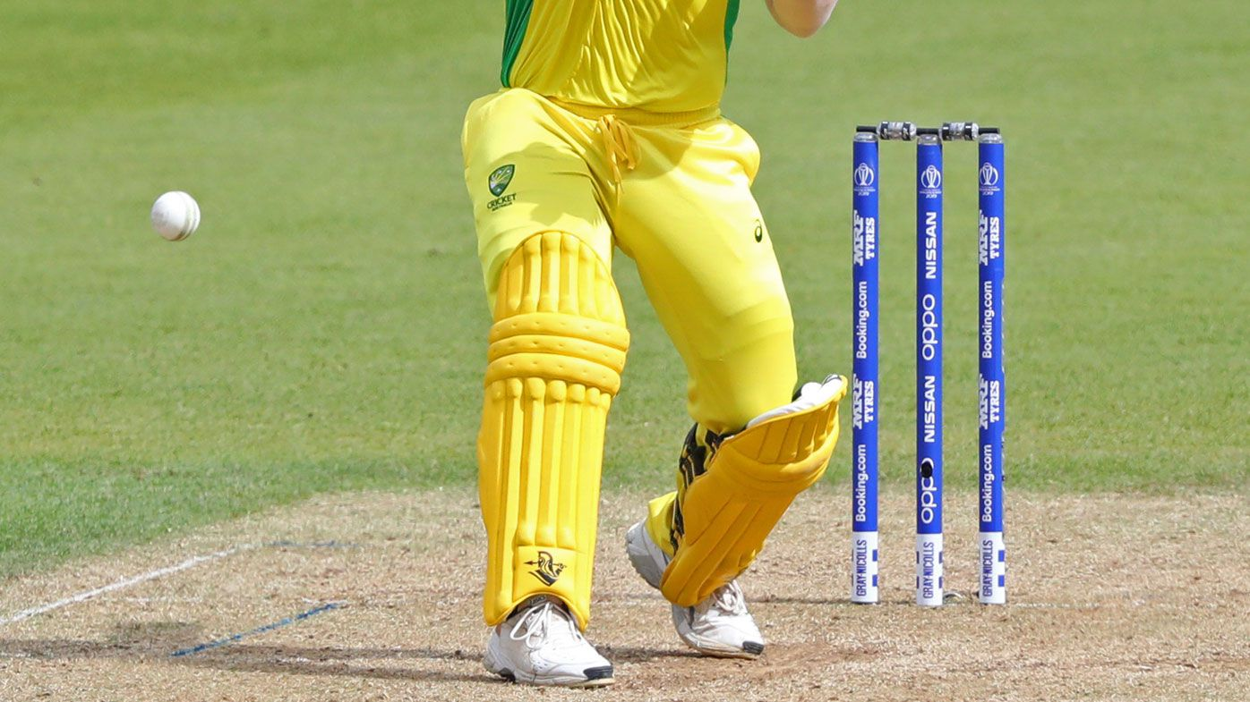 David Warner of Australia batting during the ICC Cricket World Cup