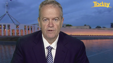 Bill Shorten has lashed those responsible behind the alleged actions.