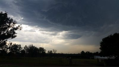 Storm clouds gather in Vineyard, NSW. (Kim Hogarth)