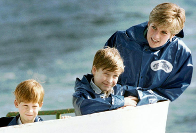 Princess Diana with Prince William and Prince Harry in 1991.