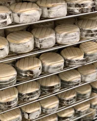 Local Castlemaine cheese
