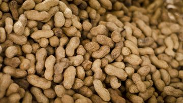 Peanuts were found to be the most common food trigger. (Network)