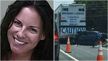Angenette Welk has been sentenced to 11 year's jail over a fatal DUI crash that killed a 60-year-old Florida mother.