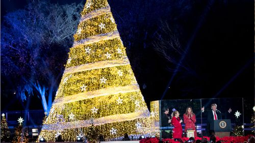 President Donald Trump and first lady Melania Trump stand after lighting the 2017 National Christmas Tree in Washington. (AP)