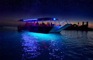 Tangalooma wrecks night glass bottom boat tour