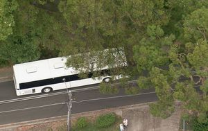 School bus with dozens of children onboard crashes into car in Sydney's south
