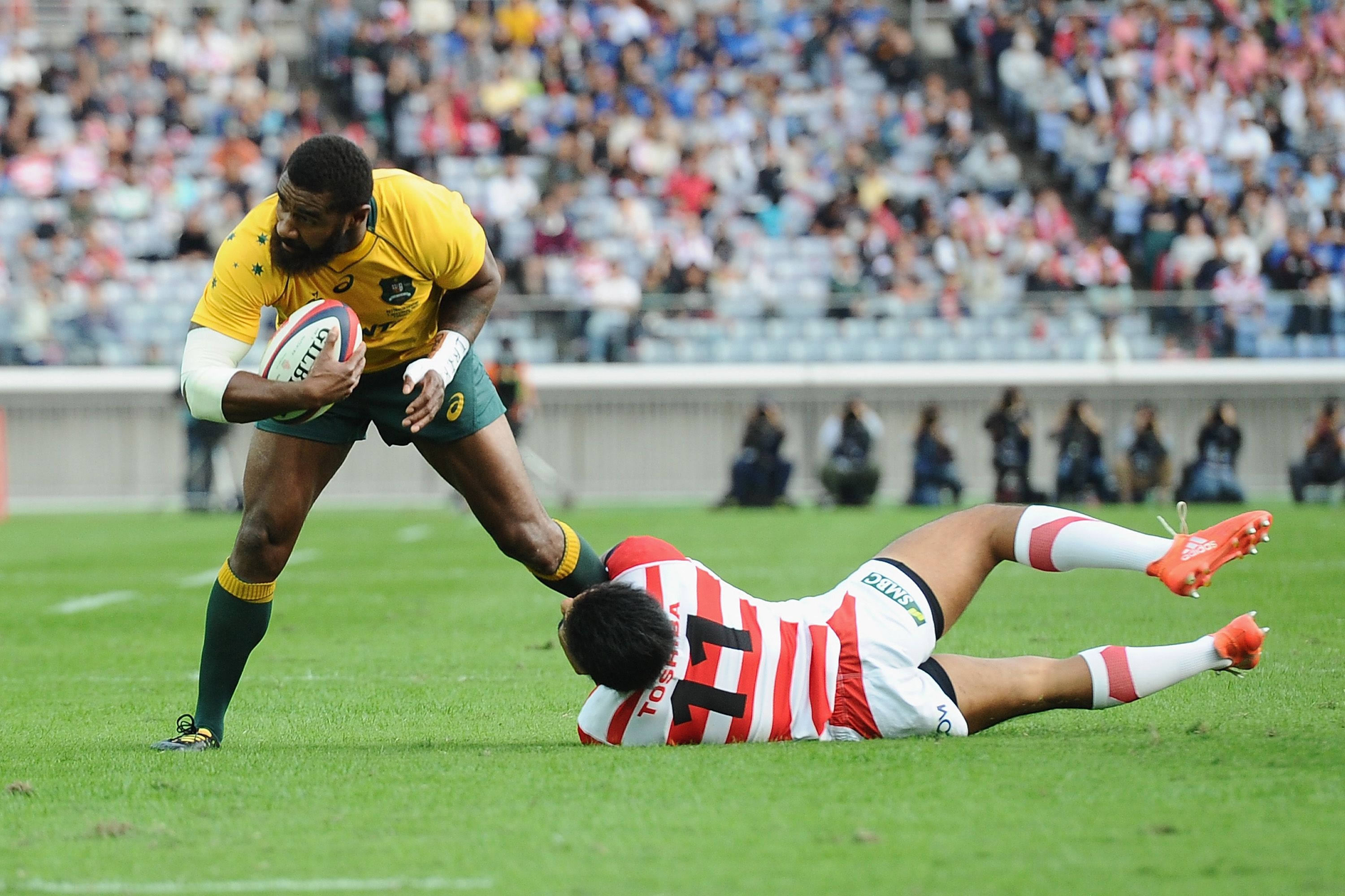 Rugby Australia confirm Wallabies Test against Japan in Oita on October 23