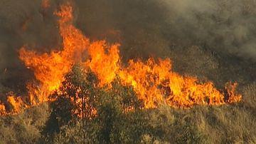 Weekend bushfire battle ahead as winds strengthen