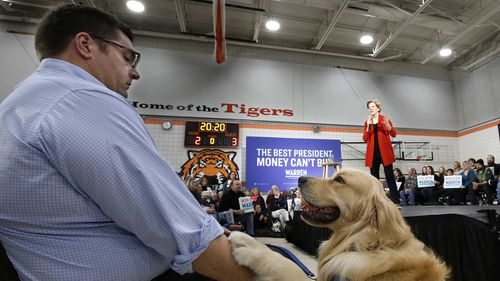 Elizabeth Warren's dog Bailey has been a constant presence on the campaign trail.