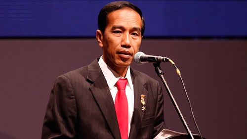 Indonesian leader insists other countries will 'understand' death penalty