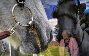 Coronavirus: Horses bring smiles to nursing home