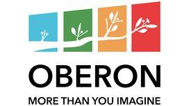 Oberon City Council