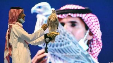 Man spends equivalent of house deposit on falcon to enter it in beauty pageant