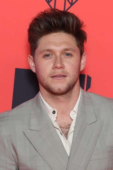 Niall Horan attends the MTV EMAs 2019 at FIBES Conference and Exhibition Centre on November 03, 2019 in Seville, Spain.