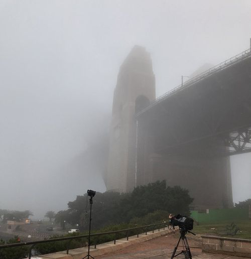 Ferries were cancelled on the harbour, and a cruise ship was stranded as the heavy fog smothered visibility. Picture: @vella_lara 9NEWS