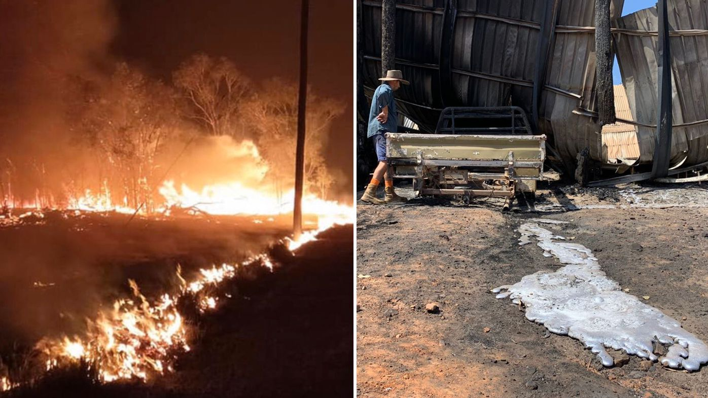 Queensland and NSW bushfires: Man's body found in burnt-out bushland - 9News