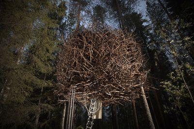 The Birds Nest, Sweden